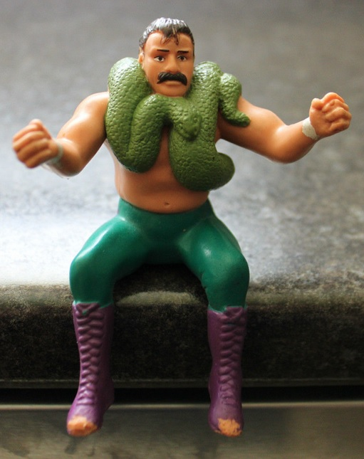 JAKE THE SNAKE ROBERTS WWF LJN THUMB RARE MOC
