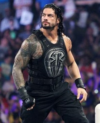 roman reigns wwe 2015 evolve the shield