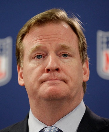 roger goodell dumb stupid ray rice nfl