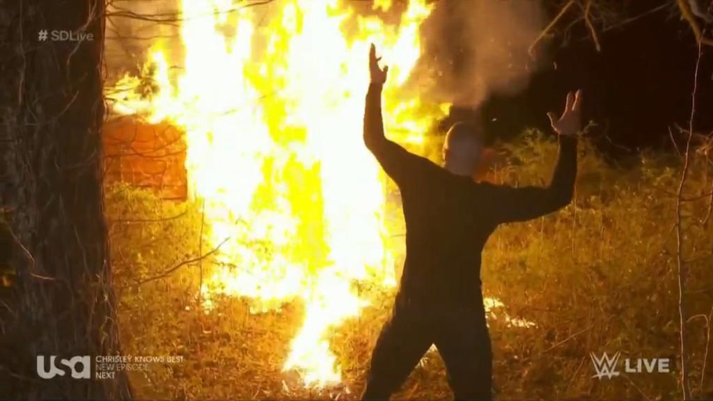Randy Orton Bray Wyatt Wrestlemania 33 burn